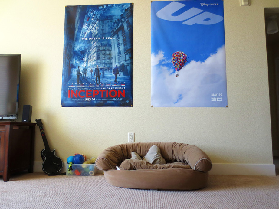 Inception Up Movie Poster Banner