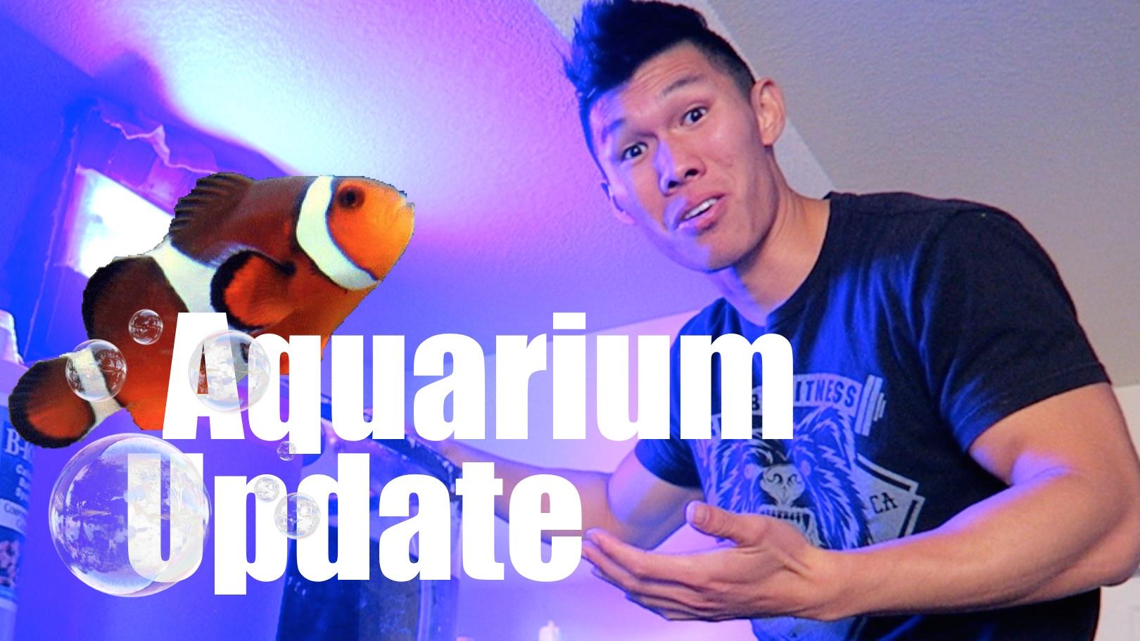 Biocube Nano Reef Aquarium Update
