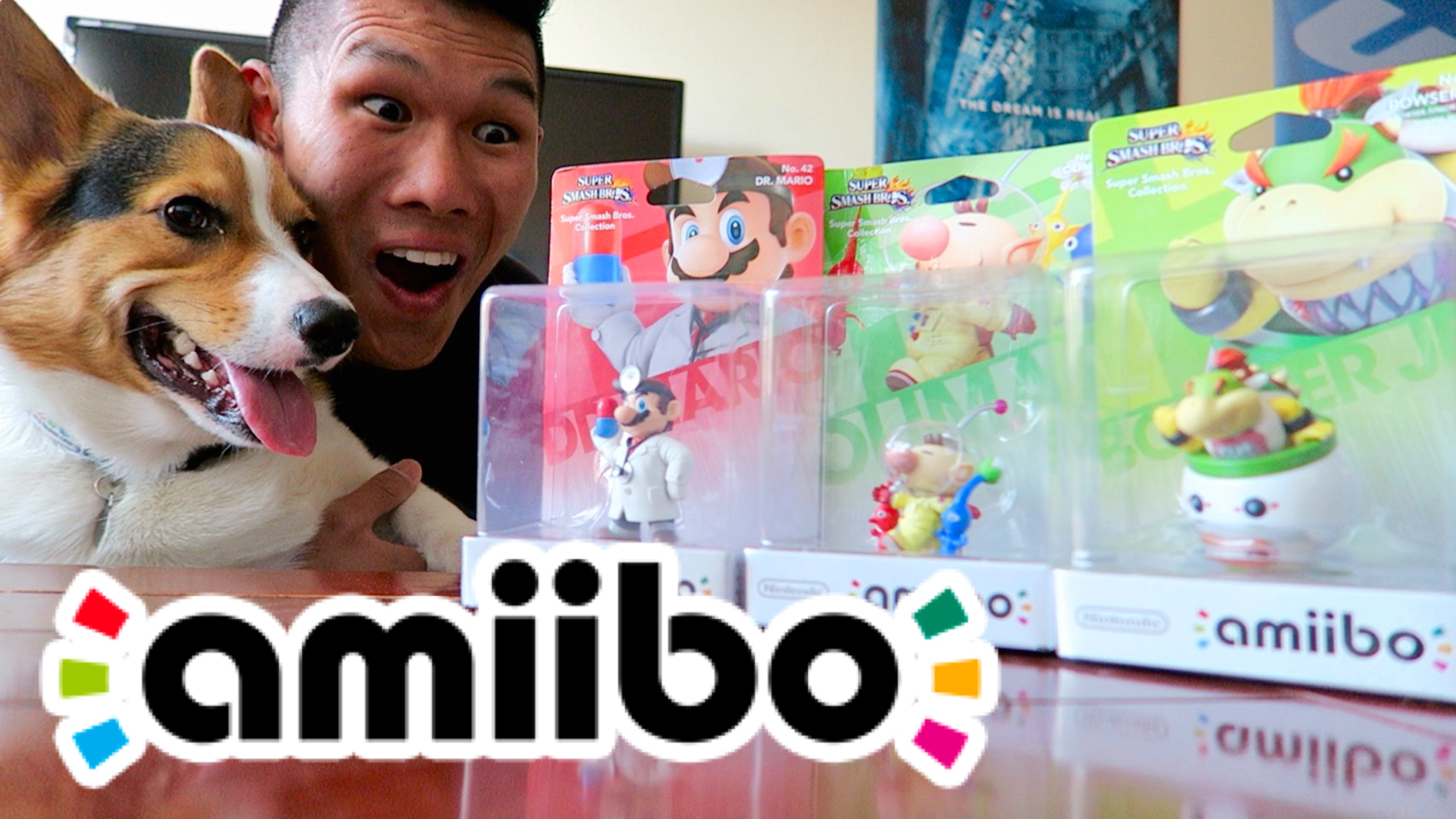 Amiibo Collection Vlog