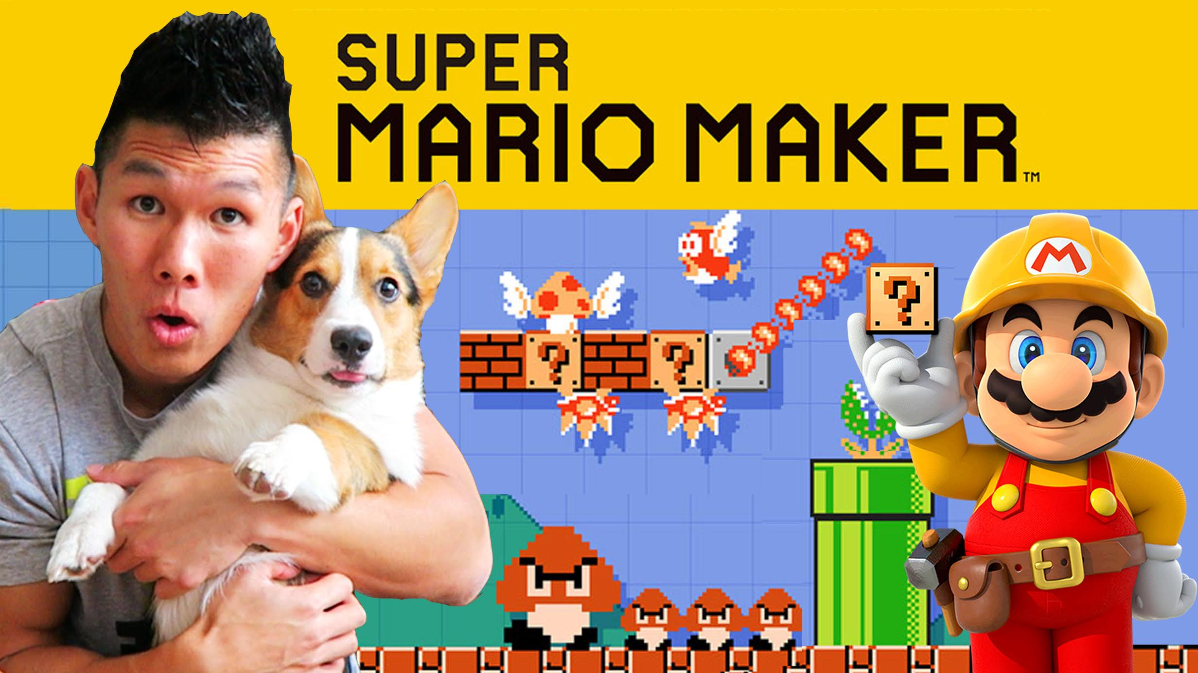 SUPER MARIO MAKER + CORGI GAMEPLAY - The Amiibo Levels