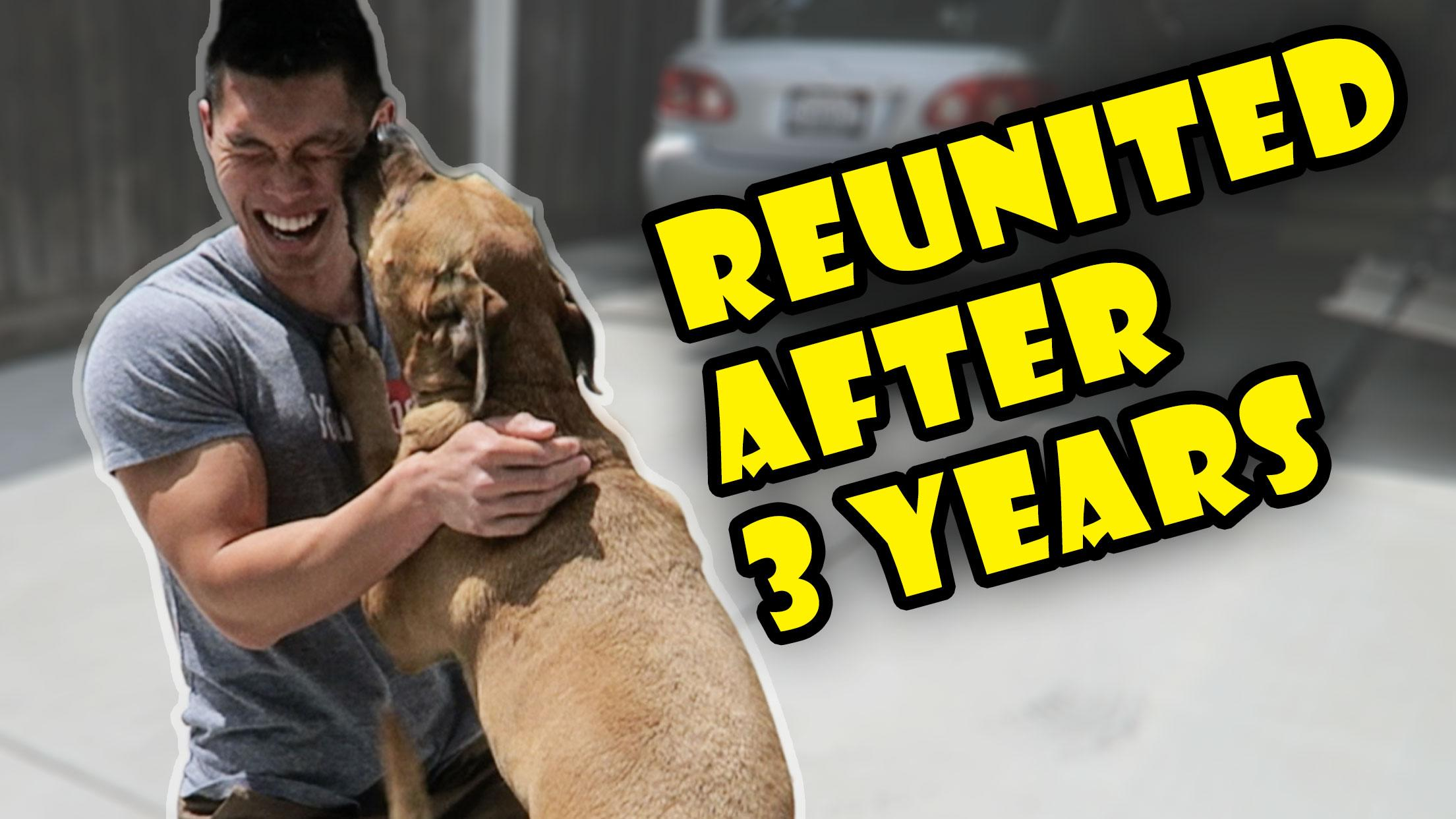 DOG REUNITED AFTER 3 YRS APART | Meets New Puppy