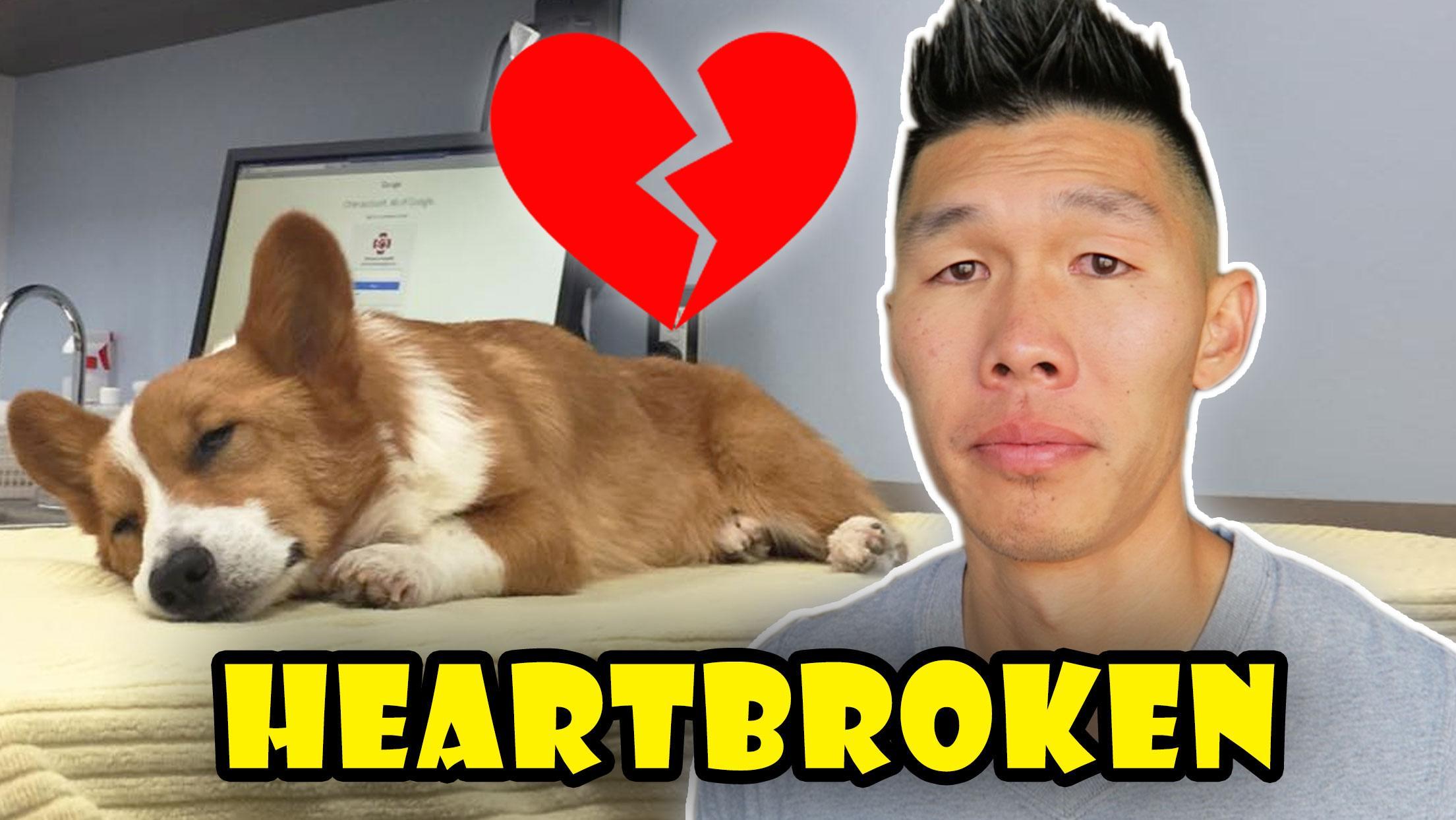 HEARTBROKEN OVER LOKI CORGI NEWS