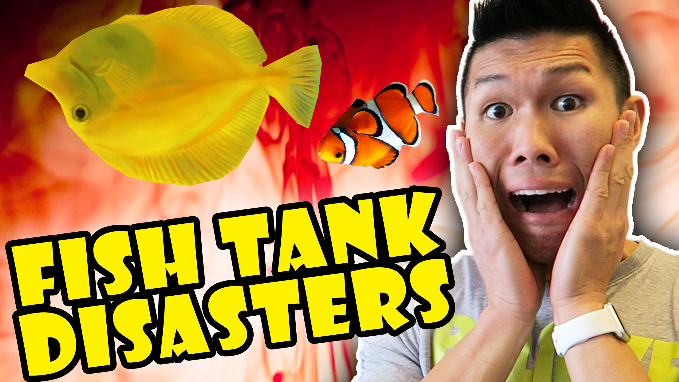 1st Year FISH DISASTERS IN $3,000 AQUARIUM