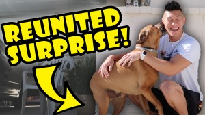 DOG REUNITED SURPRISE AFTER 1 YR APART