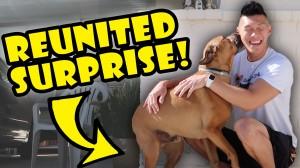 DOG REUNITED SURPRISE AFTER 1 YR APART